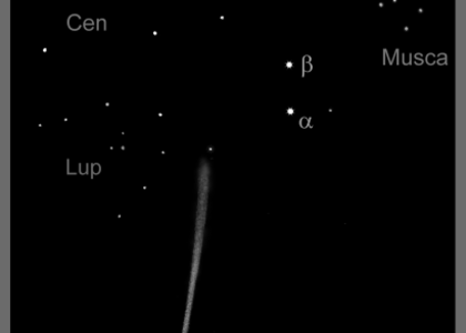 A sketch of the 20° long tail of Comet Lovejoy