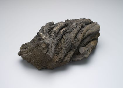 Lump of rock is actually a piece of lava from Mt. Vesuvius