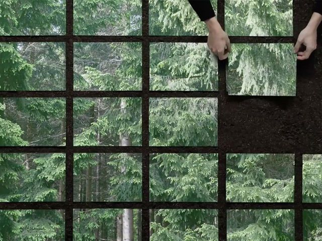 Image: Still, Seeing the wood for the trees (2020), Formafantasma and Vanessa Richardson, European Investigation Agency. As part of Cambio, commissioned by Serpentine Galleries, London.