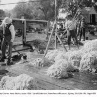 Washing wool: Enngonia bore near Bourke