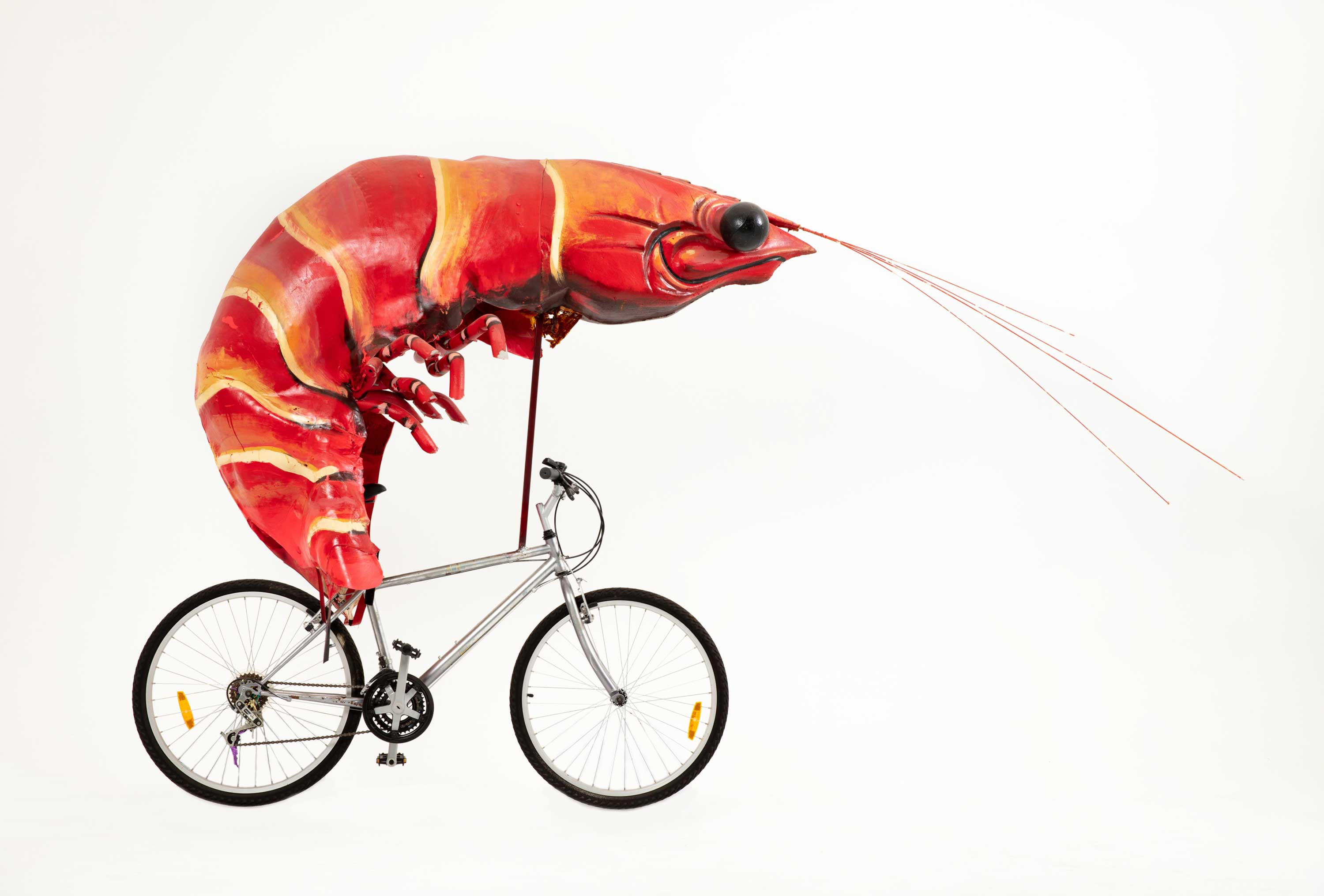 Sydney 2000 Olympic Games 20 Year Anniversary, prawn bike, Museums Discovery Centre Collection