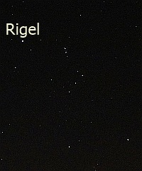 The constellation of Orion with Rigel indicated. Photo Nick Lomb
