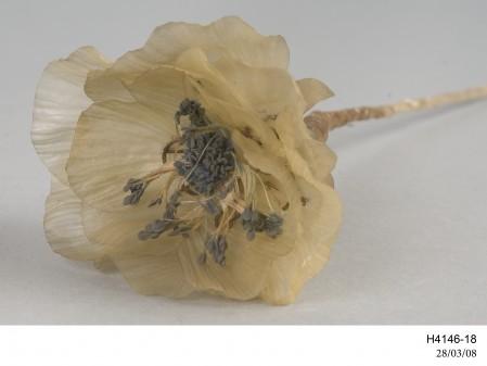Poppy flower, artificial