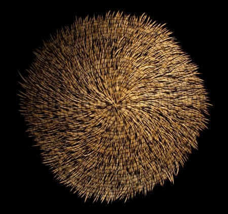 Sculpture 'One Echidna' by Christine McMillan Echidna spines pieced together to create a circular sculpture