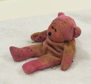 The pink ted prop dries off during a disaster training session