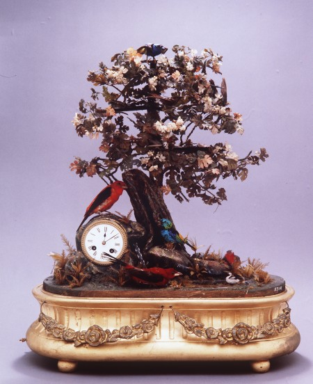 Photograph of Bird automaton fitted with clock and musical movement