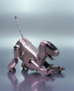 Photograph of Aibo entertainment robot