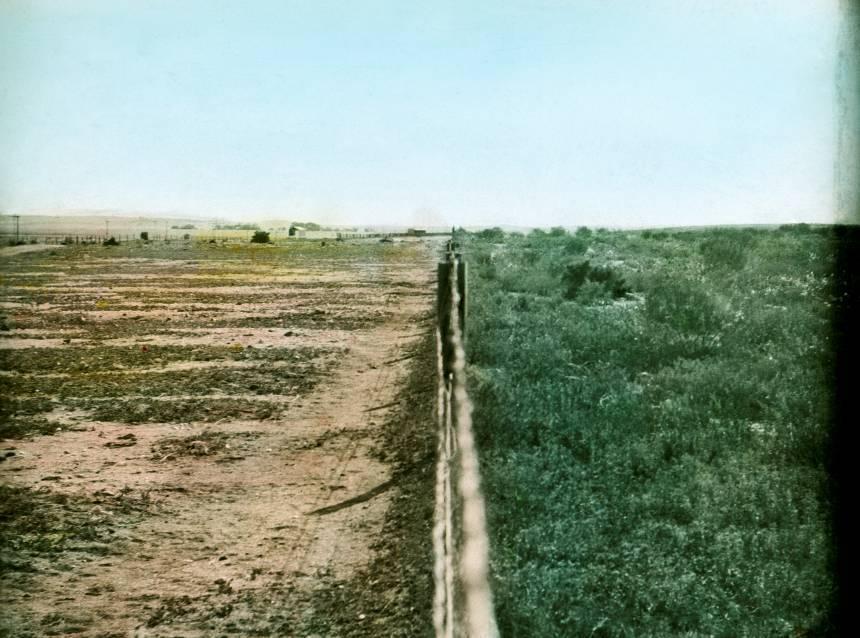 Broken Hill before and after bush regeneration