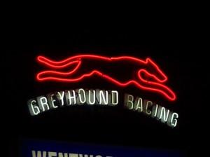 Photograph of neon 'Greyhound racing' sign