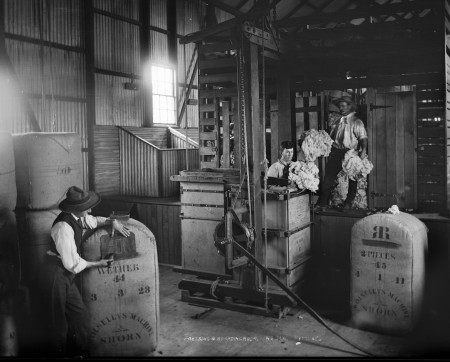 Black and white photograph of two men loading wool into a machine to compress it into bales. A man on the left is stencilling these bales with the company logo which looks like a backwards and forwards letter R joined at the spine.