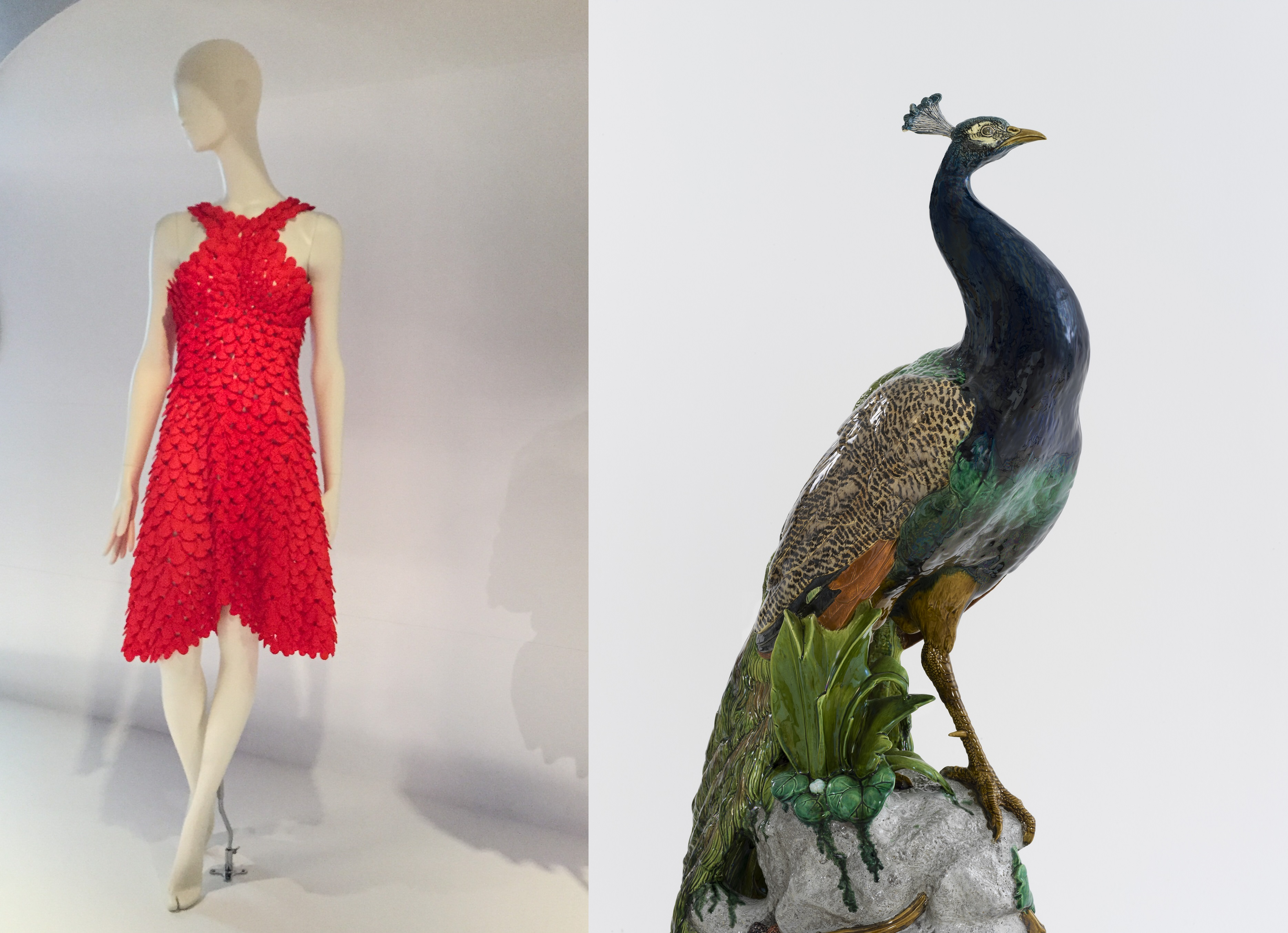 Two images side by side. Left: A red dress which appears to be made of red petals or scales, on a white mannequin. Right: Ceramic peacock sculpture featuring deep blue and green glazes.