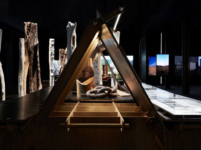 View of Eucalyptusdom, showing the exhibition's architectural design, developed through a collaboration between Richard Leplastrier AO, Jack Gillmer (Worimi, Biripi Nations) of SJB, Adam Haddow of SJB and Vania Contreras, spatial designer.